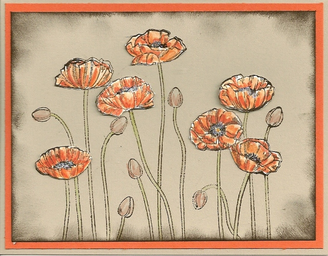 Plesant poppies 2 (640x500)