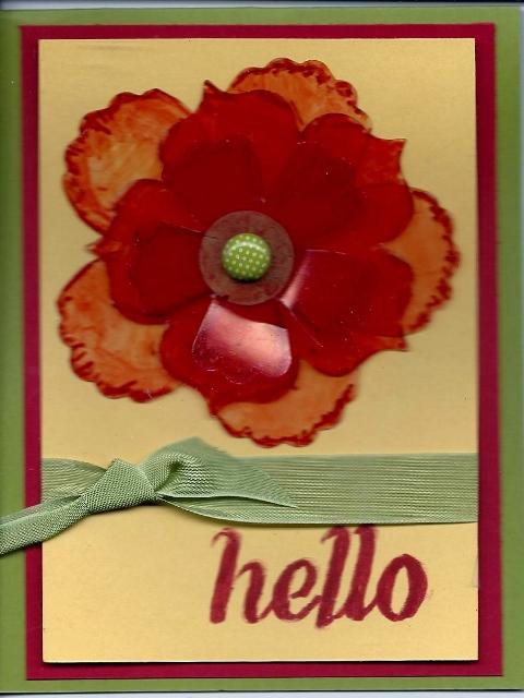 Acetate flowers (480x640)