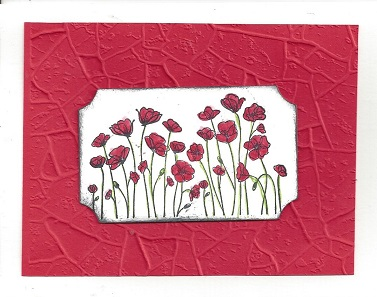 Stone embossing folders and poppies