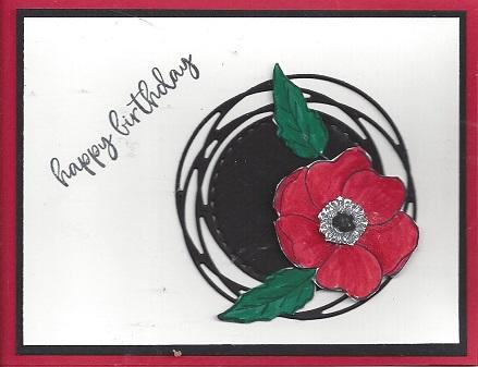Painted Poppy Bundle
